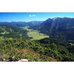 Tiroler_fotoalbum.39.jpg